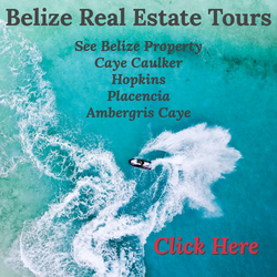 Belize real estate tours